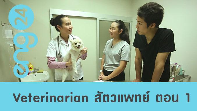 Veterinarian สัตวแพทย์ ตอน 1