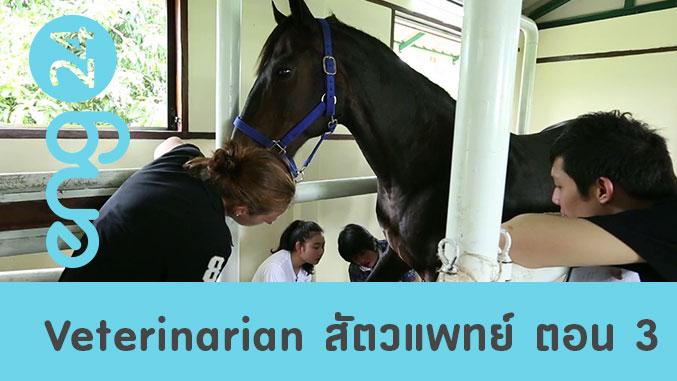 Veterinarian สัตวแพทย์ ตอน 3